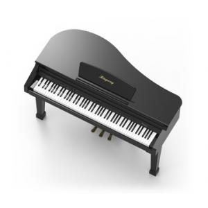 RINGWAY GDP1000L PIANO DIGITAL DE CAUDA