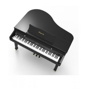RINGWAY GDP6320 PIANO DIGITAL DE CAUDA