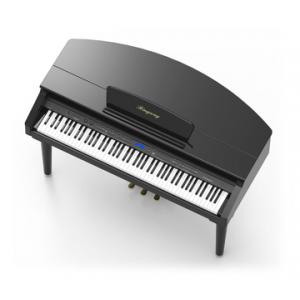 RINGWAY MGP150 PIANO DIGITAL DE CAUDA