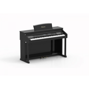 RINGWAY TG8862 PIANO DIGITAL