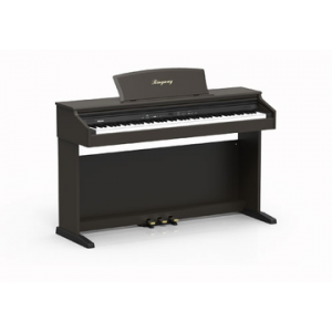 RINGWAY TG8867 PIANO DIGITAL