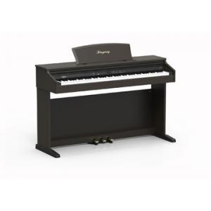RINGWAY TG8867N PIANO DIGITAL