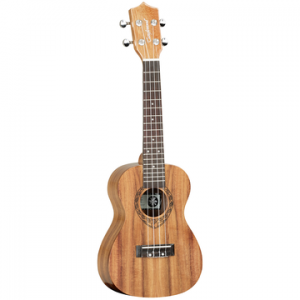 TANGLEWOOD TWT8